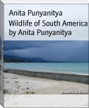 Wildlife of South America by Anita Punyanitya