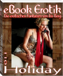 eBook Erotik 011: Holiday