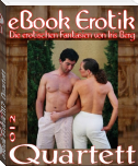 eBook Erotik 012: Quartett