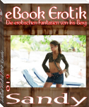 eBook Erotik 019: Sandy