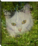 Special Cats