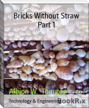 Bricks Without Straw Part 1