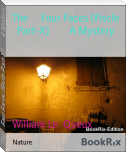 The     Four Faces (Fiscle Part-X)        A Mystery