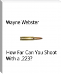 How Far Can You Shoot With a .223?