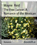 The Free Lances A Romance of the Mexican Valley