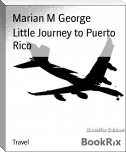 Little Journey to Puerto Rico