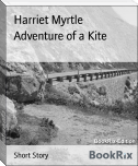 Adventure of a Kite