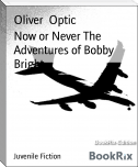 Now or Never The Adventures of Bobby Bright