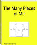 The Many Pieces of Me