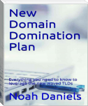 New Domain Domination Plan