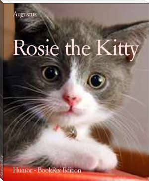 Rosie the Kitty