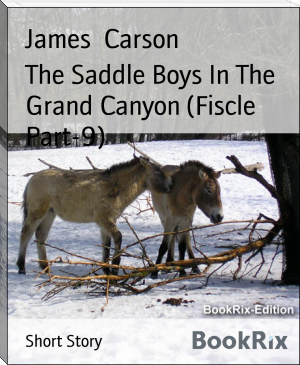 The Saddle Boys In The Grand Canyon (Fiscle Part-9)