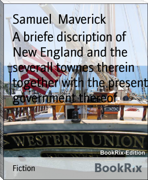 A briefe discription of New England and the severall townes therein together with the present government thereof