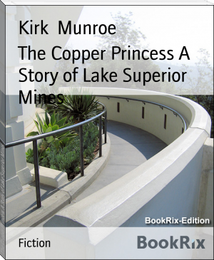 The Copper Princess A Story of Lake Superior Mines