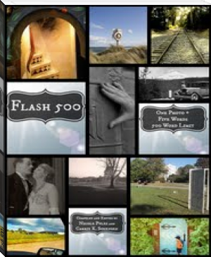 Flash 500 - An Anthology of Short Stories