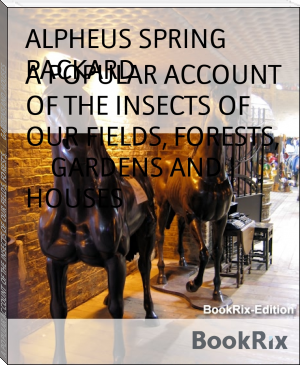 A POPULAR ACCOUNT OF THE INSECTS OF OUR FIELDS, FORESTS,        GARDENS AND HOUSES