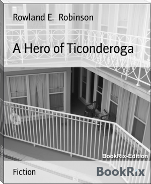 A Hero of Ticonderoga