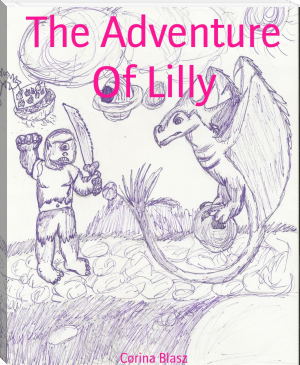 The Adventure Of Lilly