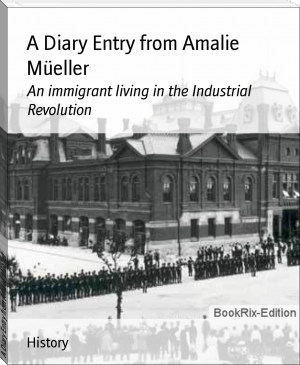 A Diary Entry from Amalie Müeller