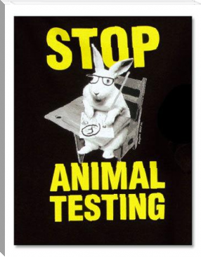 Animal Testing: Why it is morally offensive