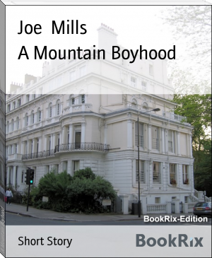 A Mountain Boyhood