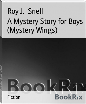A Mystery Story for Boys  (Mystery Wings)