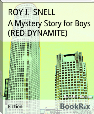 A Mystery Story for Boys  (RED DYNAMITE)