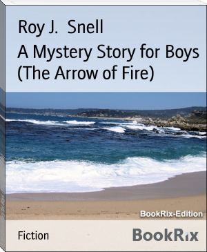A Mystery Story for Boys  (The Arrow of Fire)
