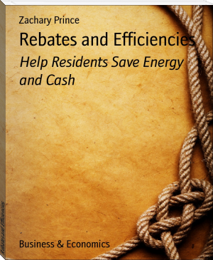 Rebates and Efficiencies