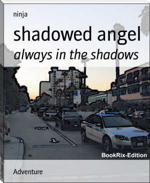 shadowed angel
