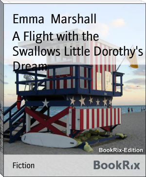 A Flight with the Swallows Little Dorothy's Dream