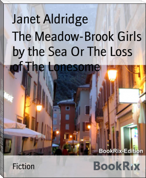The Meadow-Brook Girls by the Sea Or The Loss of The Lonesome