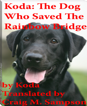 Koda: The Dog Who Saved The Rainbow Bridge