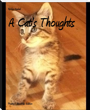 A Cat's Thoughts