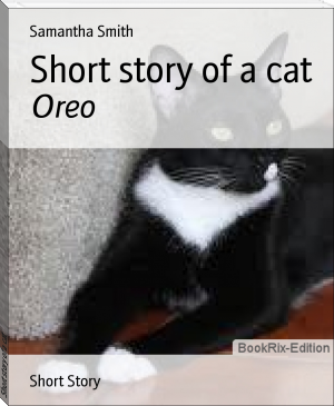 Short story of a cat