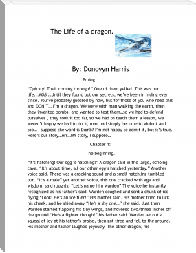 The life of a Dragon