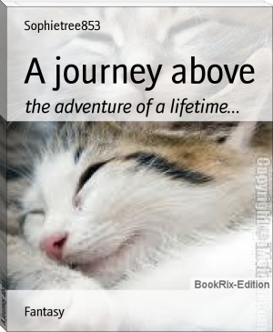 A journey above
