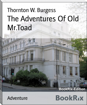 The Adventures Of Old Mr.Toad