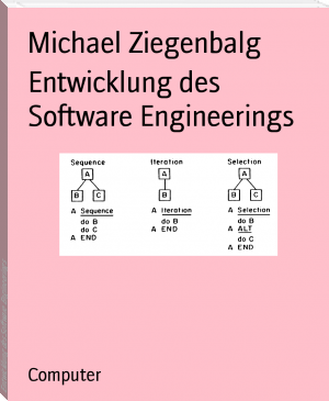 Entwicklung des Software Engineerings