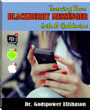 Turning Your BlackBerry® Messenger Into a Goldmine