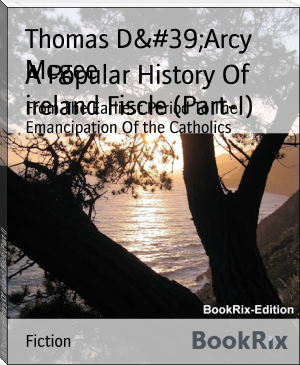 A Popular History Of ireland Fiscle (Part-I)