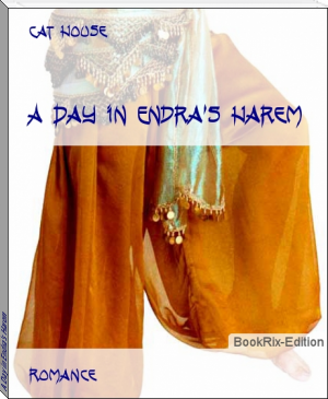 A Day in Endra's Harem