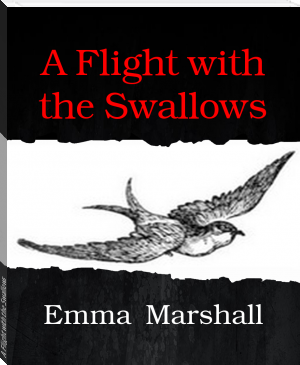A Flight with the Swallows