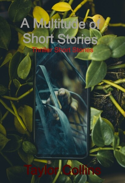 A Multitude of Short Stories