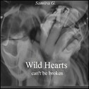 Wild Hearts (can't be broken)